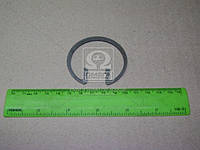 Кольцо стопорное пальца поршневого ЯМЗ 7511 (Производство ЯМЗ) 7511.1004022