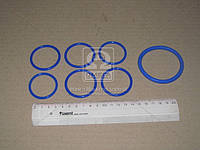 Рем комплект системы охлаждения Камаз (3 позиций) (синий силикон) (Производство ГарантАвто)