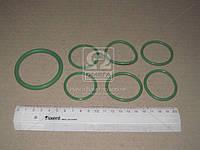 Рем комплект системы охлаждения Камаз (3 позиций) (зеленый силикон) (Производство ГарантАвто)