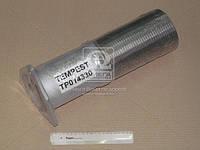 Гофра DAF 95 (TEMPEST) TP014330