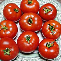 Семена томата Аврора F1 20 сем. Элитный ряд