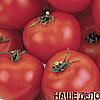 Семена томата Андромеда F1 20 сем. Элитный ряд