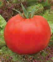 Семена томата Рок-Н-Рол F1  1 гр. Элитный Ряд