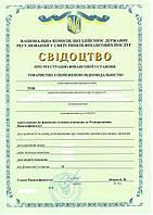 Кредитная компания с лицензией Киев купить