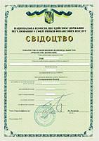 Регистрация финансовых компаний: кредитных, лизинговых