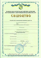 Регистрация лизинговой компании, готовый лизинг франшиза