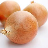 Семена лука Кенди F1 100 сем. Садыба Центр