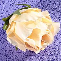 Роза 5799