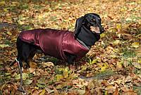 Теплая Одежда для собак Попона Active dog (разные цвета)