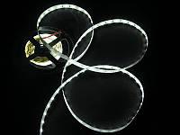Светодиодная лента SMD5630 холодный белый PREMIUM IP33