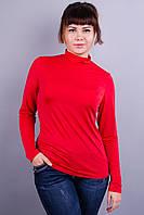Микелла. Женские гольфы больших размеров. Красный., фото 1