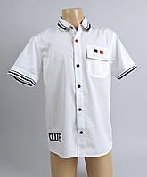 Рубашка детская с кортким рукавом