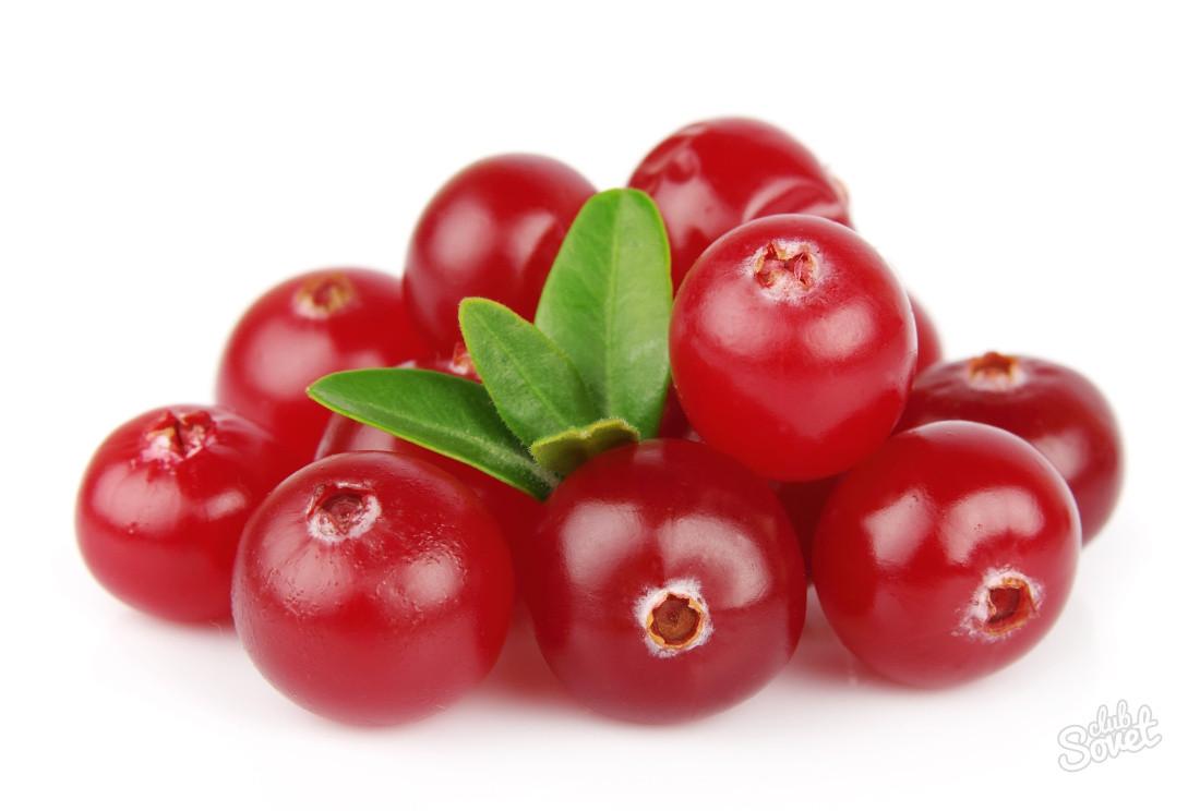 Клюква ягода свежая