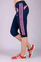 Спортивные женские бриджи  (синие)