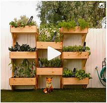 Как сделать сад своими руками. Пошаговая инструкция с фото и видео.