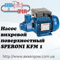 Насос поверхностный вихревой SPERONI KFM 1