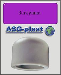 Заглушка 25 ASG-plast полипропилен