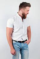 Привлекательная мужская рубашка из качественного хлопка с короткими рукавами и необычным воротником белая, голубая, зеленая, мятная, светло-сиреневая,
