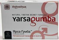 Яpcaгумбa таблетки капсулы для потенции, лечение простатита, купить, цена, отзывы