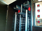 Электростатическая коптильня холодного копчения COSMOGEN CSFE-2020, фото 2
