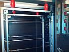 Электростатическая коптильня холодного копчения COSMOGEN CSFE-2020, фото 5