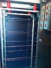 Электростатическая коптильня холодного копчения COSMOGEN CSFE-2020, фото 6