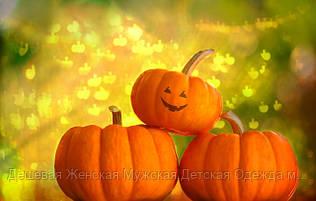 🎃🎃🎃 Интересный праздник Хэллоуин 🎃🎃