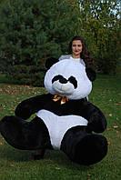 Панда 200 см.