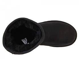 Угги UGG Classic Short черные на овчине топ реплика, фото 3