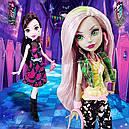 Набір ляльок Monster High Дракулаура і Моаника Draculaura Moanica D kay Ласкаво просимо у Школу Монстрів, фото 9