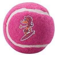 Игрушка для собак теннисный мяч молекула 5, лиловый, ROGZ 1 штука