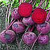Семена свеклы Зепо F1 200 сем. Садыба Центр