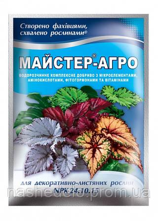 Удобрение Мастер Агро для декоративно-лиственных растений 24.10.15 (Мастер) 25 гр. Valagro