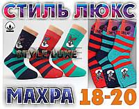Носки детские махровые СТИЛЬ ЛЮКС Украина размер 18-20  НДЗ-88