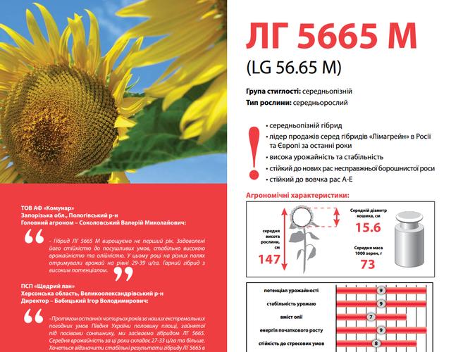 Семена подсолнечника Лимагрейн ЛГ 5665 М (Limagrain)