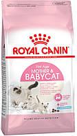 Royal Canin Babycat 34 Корм для котят с 1 до 4 месяцев