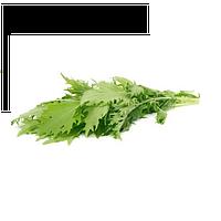 Семена салата Мизуна зеленая 5 гр. Коуел (Sais)