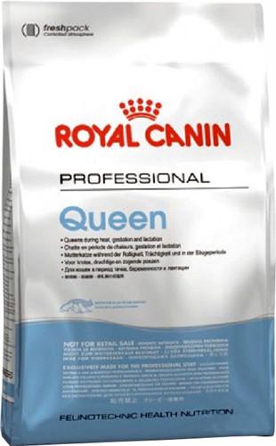 Корм для кошек в период беременности и лактации Royal Canin Queen