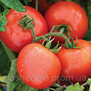 Семена томата Президент 8 сем. Садыба Центр