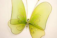 Декоративные бабочки большие