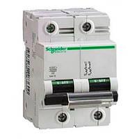 Автоматический выключатель Schneider Electric C120N, 100А, кривая D, 2-полюсный A9N18384
