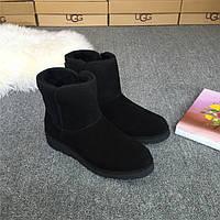 Сапожки женские UGG Abree Mini (угг аври мини) черные, ботинки женские угги абри мини замшевые