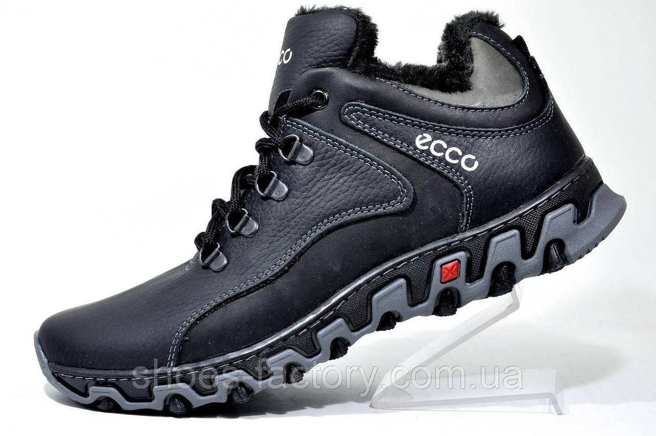 Зимние мужские ботинки в стиле Ecco, Кожаные