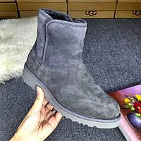 Сапожки женские UGG Abree Mini (угг абри мини) серые, ботинки женские угги абри мини замшевые