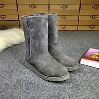 Сапоги женские UGG Abree (угг абри) серые, ботинки женские угги абри замшевые