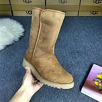 Сапоги женские UGG Abree (угг абри) коричневые, ботинки женские угги абри замшевые