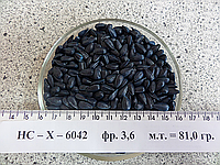 Семена подсолнуха «НС-Х-6042» (Сербский гибрид)