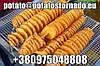 Спиральные чипсы на палочке