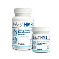 Долвит ГМБ (HMB) метаболик для собак і кішок 90 табл.,90 гр.