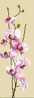 Орхидея(панель). Набор для мозаики